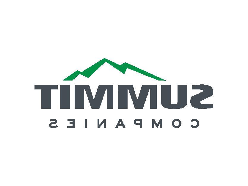 峰会的公司标志